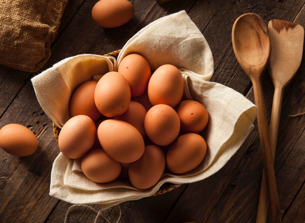 Read all about our Eggs...